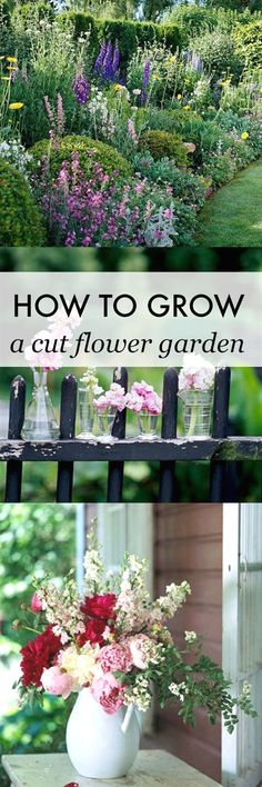 Learn how to grow your own cut flower garden! Make your own beautiful flower arrangements at home all summer long. An inexpensive way to decorate! #GardeningDesign