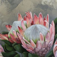 PROTEAS ON CANVAS Protea Art, Protea Flower, Botanical Illustration, Botanical Prints, Watercolor Flowers, Painting Inspiration, Painting & Drawing, Flower Art, Flower Power