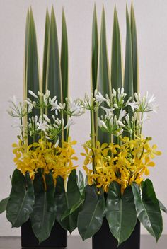 VERTICAL DESIGN. sub variegated iris leaves, arum leaves, choice of similarly open flowers