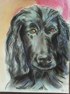 Hond.  Pastel.