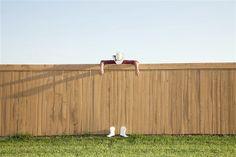 Image: Fantastical humour of Zack Seckler (© Zack Seckler)
