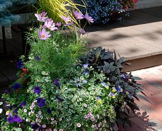 This year, plant beautiful containers that attract butterflies and hummingbirds. http://www.gardeners.com/Planters-for-Pollinators/7928,default,pg.html#?utm_source=pinterest.com_medium=referral_term=learn_content=pin_campaign=pollinators
