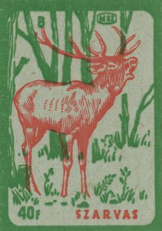 Vintage Hungarian deer in the woods matchbox label.
