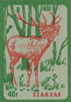 Vintage Hungarian deer in the woods matchbox label.