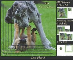 Furry Friends   Familiars   Dog Play 8   Pyrimage pyramid   Insert   Tag on Craftsuprint - View Now!