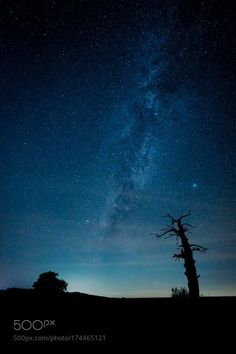 "The old wise Oak The oak stands for many years there in the field. Again and again she used me as a motif. That night the Milky Way was perfect to bring them together with the oak on a photo. I hope you like the picture just like me. Thank you for your ""Like"" and your support Camera: Canon EOS 5D Mark III Lens: EF16-35mm f/4L IS USM Visit http://ift.tt/1qPHad3 and read how to see the Milky Way. Image credit: http://ift.tt/2d1EhEw Don't forget to Like Follow for more awesome astrophotogra..."
