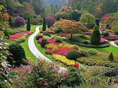 The Butchart Gardens.