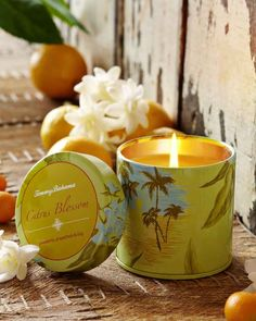 Scented Candles | Shop Candles | Highly Scented Candles | Scented Candle