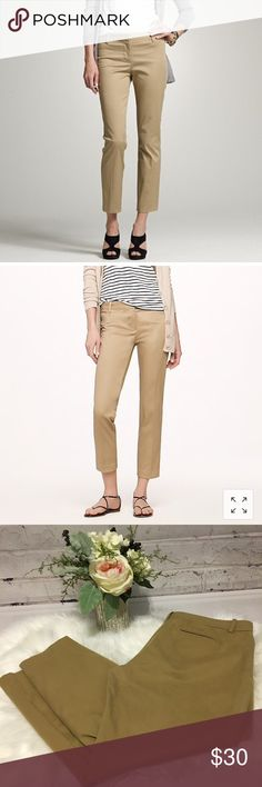 d4967aad3180e British Fashion Bug Womens Plus Size Casual Printed Palazzo Wide Leg Pants   British  UK  FashionBug  PlusSize  Pa…