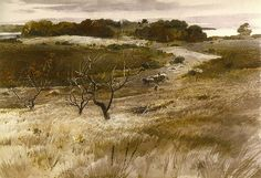 Fields of Broad Cove, 1941, by Andrew Wyeth | Early watercol… | Flickr