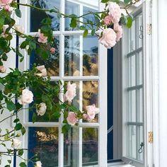 Villino delle rose