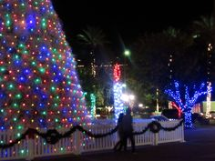 Tumbleweed tree and candle. Arizona, Fair Grounds, Christmas Tree, Candles, Holiday Decor, Fun, Teal Christmas Tree, Xmas Trees, Candy