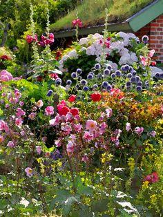 'Friesischer Bauerngarten à la Nolde' von Dirk h. Wendt bei artflakes.com als Poster oder Kunstdruck $18.03