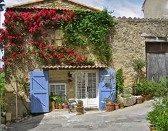 LA DOLCE VITA: Living the Good Life in California's Mediterranean Climate: Climbing Roses in the Villages of Provence