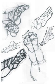 Learn To Draw A Glass - Drawing On Demand Anatomy of the Human Foot This . - Learn To Draw A Glass – Drawing On Demand Anatomy of the Human Foot This image has get 109 - Anatomy Sketches, Body Sketches, Anatomy Art, Anatomy Drawing, Drawing Sketches, Foot Anatomy, Drawing Tips, Feet Drawing, Body Drawing