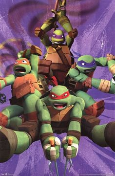 Teenage Mutant Ninja Turtles - Team