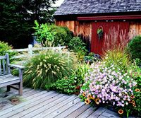 Fall Deckside Garden Plan from BHG. See it laid out and drawn out before you plant.