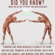 Did you know about the standing side bend??? Yoga Positionen, Yoga Moves, Yoga Exercises, Yoga Meditation, Yoga Flow, Hot Yoga, Scoliosis Exercises, Fitness Facts, Yoga Fitness
