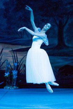 Polina Semionova with Mikhailovsky Ballet. Photo: Stas Levshin. I can't believe she's a guest principal with the Mikhailovsky!