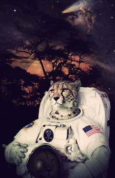 Space Cheetah Astronaut Poster, Space Print, Savannah Sky $18