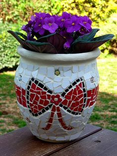 A gift plant pot with a gift ribbon height 25 cm