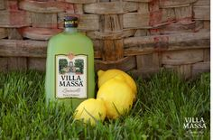 All natural Limoncello from Sorrento, Italy. Made by using only P.G.I Sorrento Oval lemon peels.