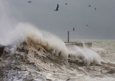 White horses storm over the harbour wall at Shoreham