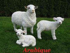 Mooi schaap en lammetje | Arabique | Kunststof tuinbeelden
