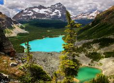 Lake O'hara, middle; Emerald Lake, middle left. Beautiful colors.