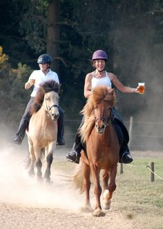 Two Icelandic Horses With Two Riders & Two Beers = Pure Happiness | One Of The Best Icelandic Pics