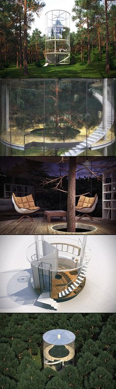 These days, tree houses built in the middle of nowhere are much more common. But a tree growing within a house, now that's something we don't see every day. Say hello to the aptly titled 'Tree In The House.'  Led by architect Almasov Aibek, the team at A. Mascow studio designed this beautiful tree house. This massive cylindrical structure features a facade constructed entirely from glass, as to not obstruct any of 360-degree views.