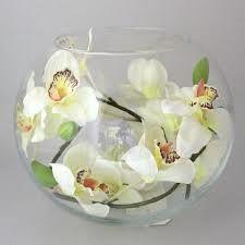 cream orchids - Google Search