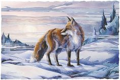 Bergsma Gallery Press::Paintings::Nature::Wild Land Animals::Wolves and Wild Dogs::The Silent Observer - Prints