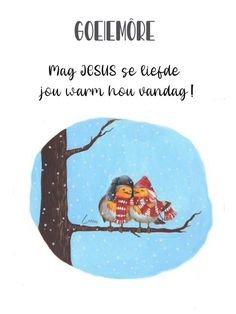 Lekker Dag, Afrikaanse Quotes, Goeie More, Good Night Quotes, Morning Greeting, Good Morning, Cat Lovers, Fancy, Messages