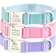 A personal favorite from my Etsy shop https://www.etsy.com/listing/227687137/personalized-dog-collar-engraved-pet-id