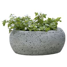 """9"""" Kira Planter Gray Outdoor Urns Planters & Jardinieres ($39) ❤ liked on Polyvore featuring home, outdoors, outdoor decor, fillers, plants, plant filler, grey, outdoor, outdoor urn planters and modern outdoor planters"""