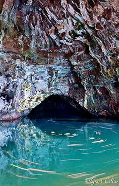 A swim in this Blue Room in Kauai takes your breath away. An old volcano tube let's the light shine in the cave and up through the water.