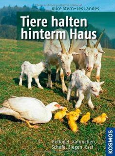 Tiere halten hinterm Haus: Geflügel, Kaninchen, Schafe, Ziegen, Esel von Alice Stern-Les Landes http://www.amazon.de/dp/344012276X/ref=cm_sw_r_pi_dp_qun9ub0NK1437