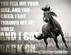 You fell off your bike, and you cried. I got thrown off my horse, and I got back on. Cowgirl Quote, Cowgirl And Horse, Horse Girl, Horse Love, Rodeo Quotes, Equine Quotes, Equestrian Quotes, Hunting Quotes, Equestrian Problems