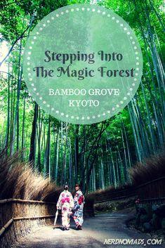 We had a great walk through the amazing bamboo grove in #Kyoto! @nerdnomads http://nerdnomads.com/bamboo-grove-kyoto