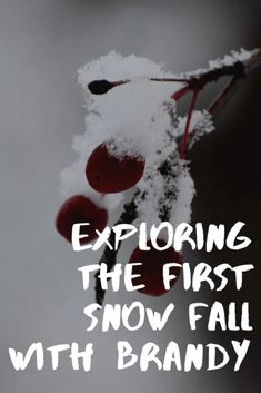 First Snow, Dry Leaf, In The Tree, The Body Shop, Creative Writing, Tree Branches, The One, Storytelling, Exploring