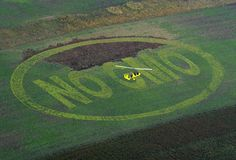 Genetically Modified Crops Have Led To Pesticide Increase, Study Finds  Reuters | By Carey Gillam   Posted: 10/01/2012