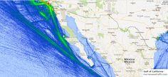 Gulf of California Gulf Of California, Marine Traffic, Oceans, Maps, Sea, Blue Prints, The Ocean, Ocean, Map