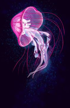 EatSleepDraw is an online art gallery where we post original content submitted by contributors across the globe. Jellyfish Painting, Jellyfish Tattoo, Beautiful Sea Creatures, Deep Sea Creatures, Fantasy Creatures, Mythical Creatures, Sleeping Drawing, Wallpaper Animes, Mermaids And Mermen