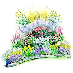 Here's the perfect solution if you want to have a beautiful garden, but don't have time to keep it up! Our Easy-Care Summer Garden Plan features no-fail favorites such as catmint, daylily, iris, Russian sage, and yarrow. The parade of blooms starts in May and continues all the way through September. Then through winter, you'll enjoy the architectural interest from the feather reedgrass. This garden is 12x13 feet in size.