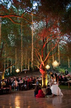 Wedding, Reception, Pink, White, Green, Brown, Chandelier, Guests - Project Wedding