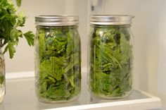 how to keep lettuce fresh for much longer in glass jars