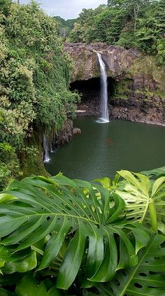 Rainbow Falls, Big Island, Hawaii, USA This is one we will see on the Big Island Dianne :) Hawaii Vacation, Hawaii Travel, Vacation Spots, Hawaii Usa, Oh The Places You'll Go, Places To Travel, Places To Visit, Big Island Hawaii, Beautiful Waterfalls