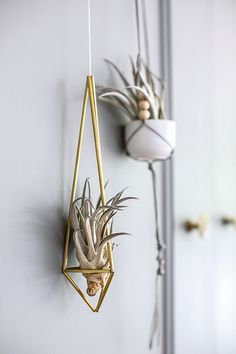 Metal Is One Of The Greatest Trends For Home, Outdoor Hotel Or Apartment  Decor. Hanging TerrariumHanging PlantersHome PlantsAir ...