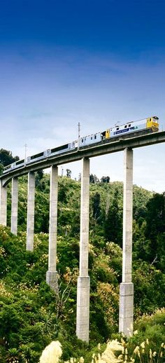 """The Passenger Train """"Overlander"""" bewteewn Auckland & Wellington Rtn, crosses many structures. I believe this viaduct is in the Rangatikae Region - NZ"""